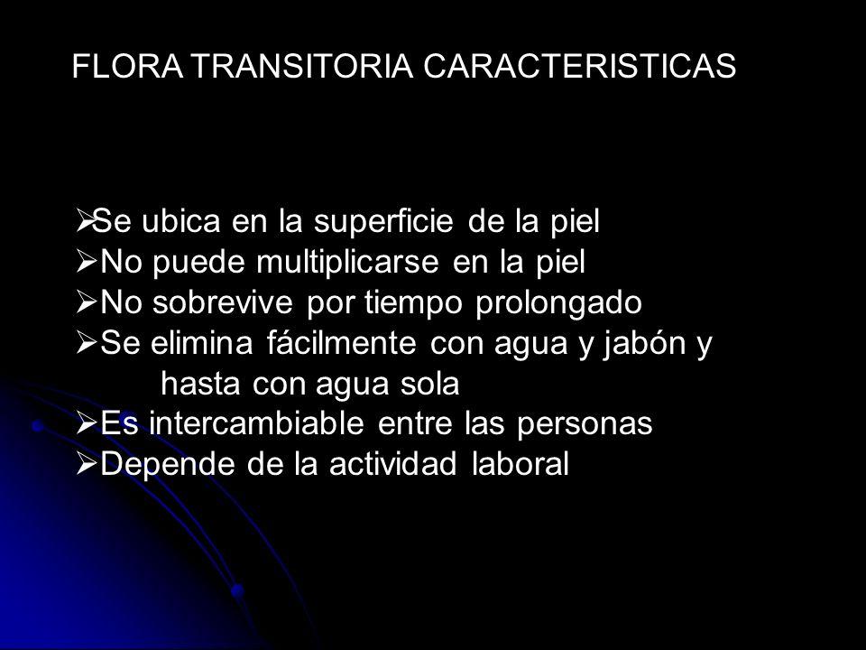 FLORA TRANSITORIA CARACTERISTICAS