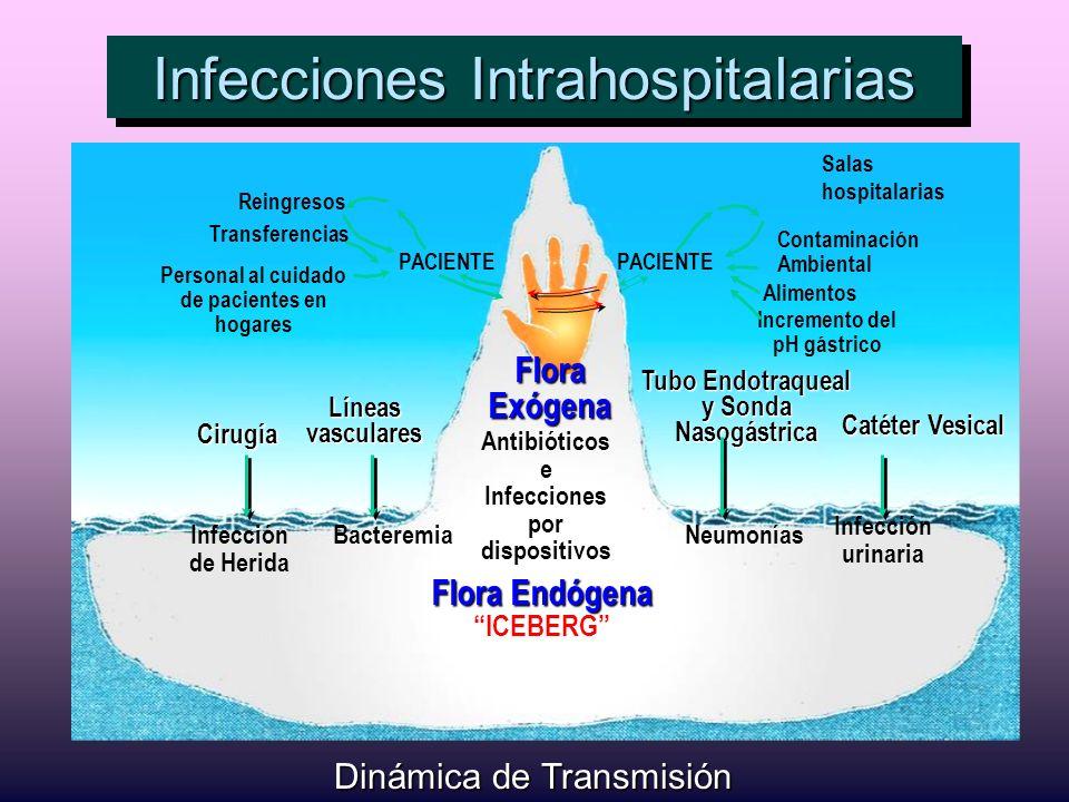 Infecciones Intrahospitalarias