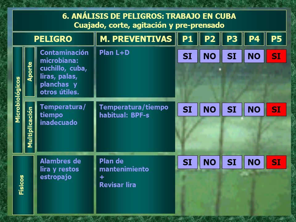PELIGRO M. PREVENTIVAS P1 P2 P3 P4 P5 NO SI NO SI NO SI