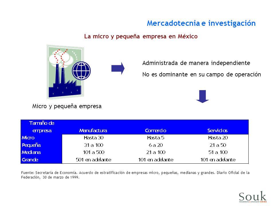 La micro y pequeña empresa en México