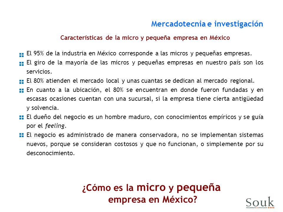 ¿Cómo es la micro y pequeña empresa en México