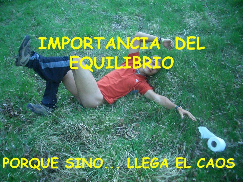 IMPORTANCIA DEL EQUILIBRIO