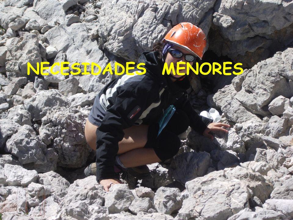 NECESIDADES MENORES
