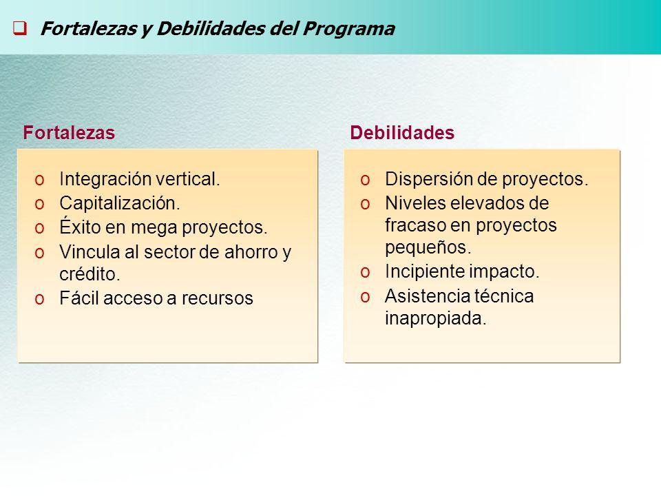 Fortalezas y Debilidades del Programa