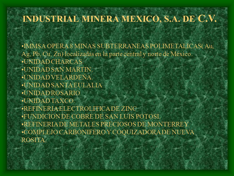 INDUSTRIAL MINERA MEXICO, S.A. DE C.V.