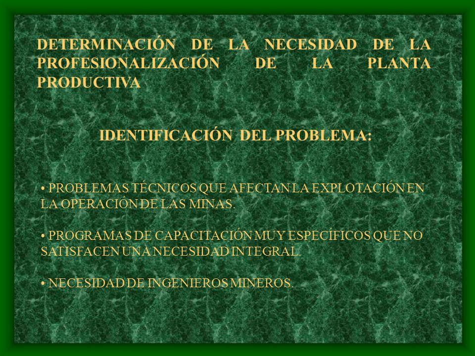IDENTIFICACIÓN DEL PROBLEMA:
