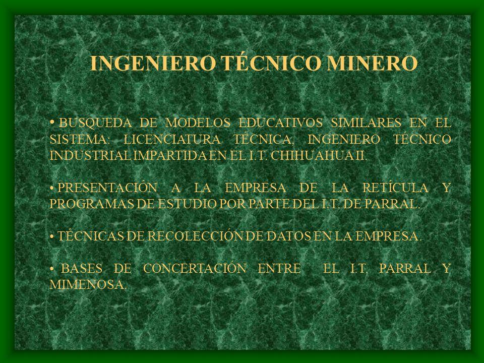 INGENIERO TÉCNICO MINERO