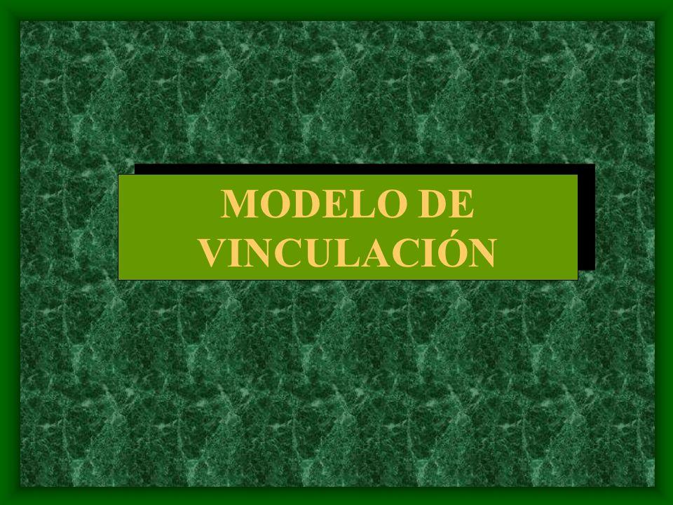 MODELO DE VINCULACIÓN