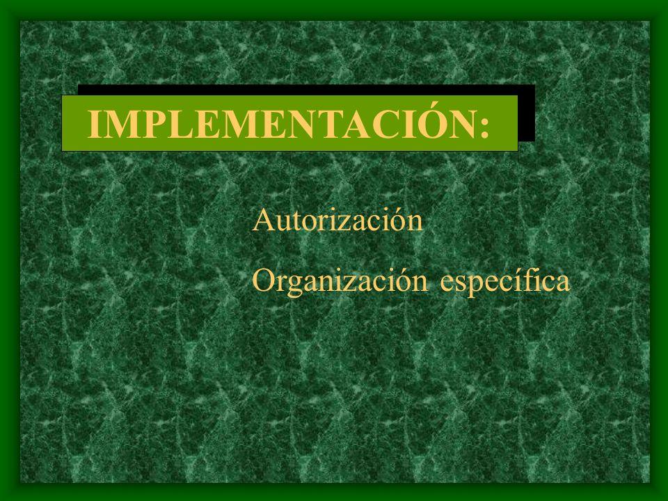 IMPLEMENTACIÓN: Autorización Organización específica