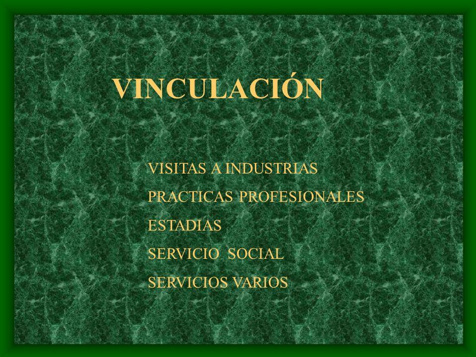 VINCULACIÓN VISITAS A INDUSTRIAS PRACTICAS PROFESIONALES ESTADIAS