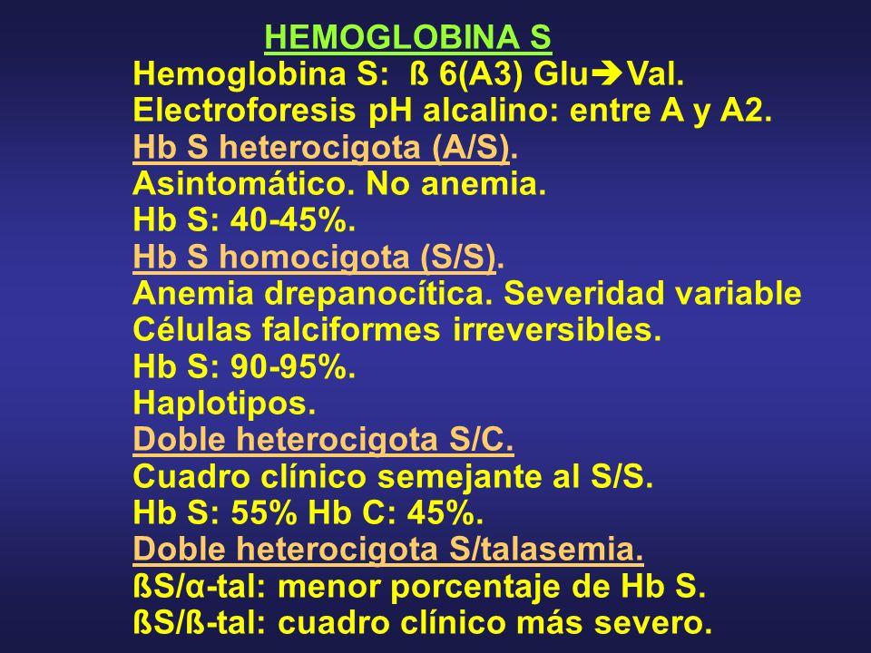 HEMOGLOBINA S Hemoglobina S: ß 6(A3) GluVal. Electroforesis pH alcalino: entre A y A2. Hb S heterocigota (A/S).
