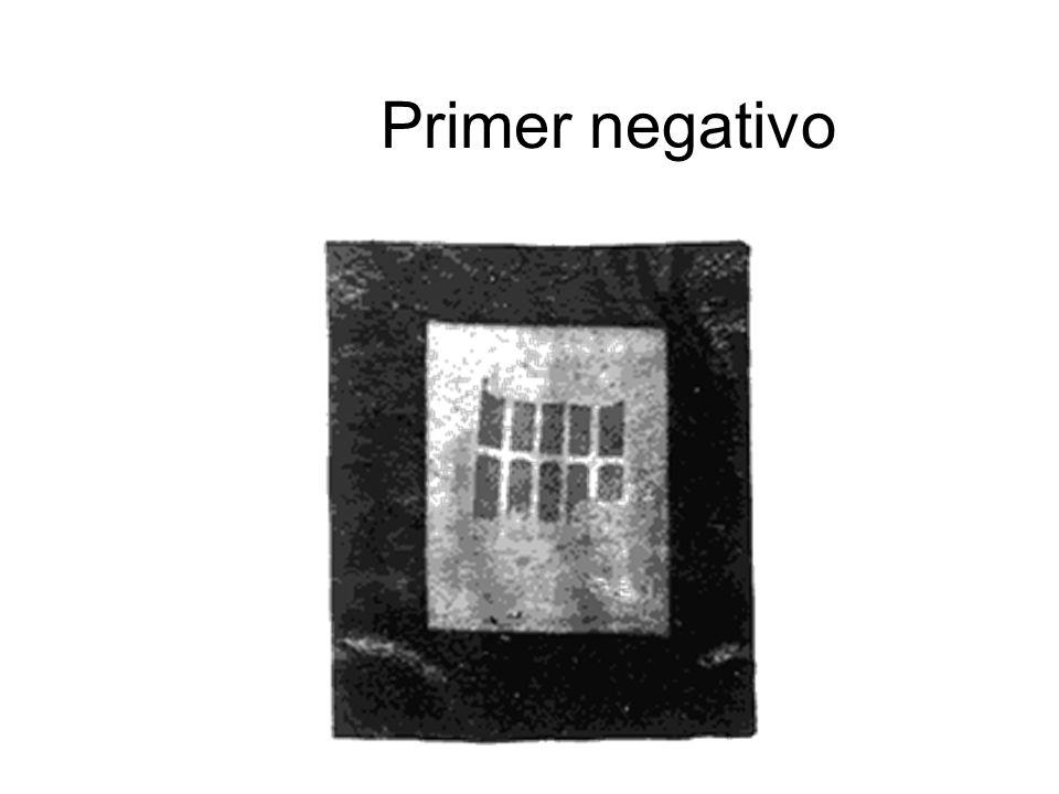 Primer negativo