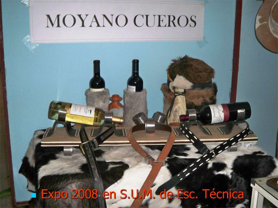 Expo 2008 en S.U.M. de Esc. Técnica