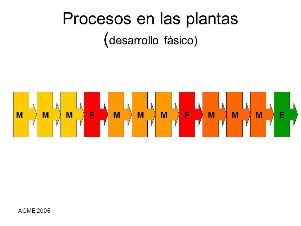 Procesos en las plantas (desarrollo fásico)