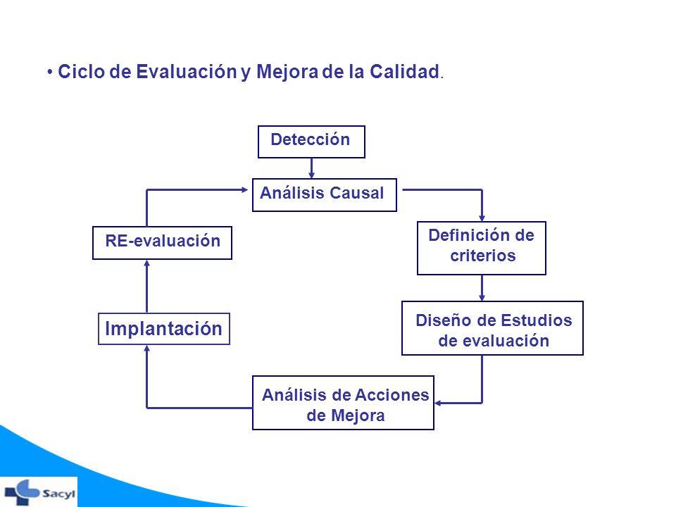 Ciclo de Evaluación y Mejora de la Calidad.