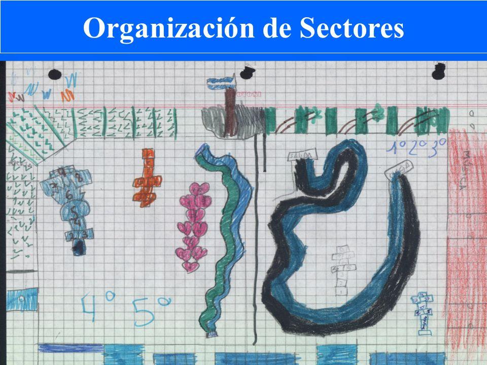 Organización de Sectores