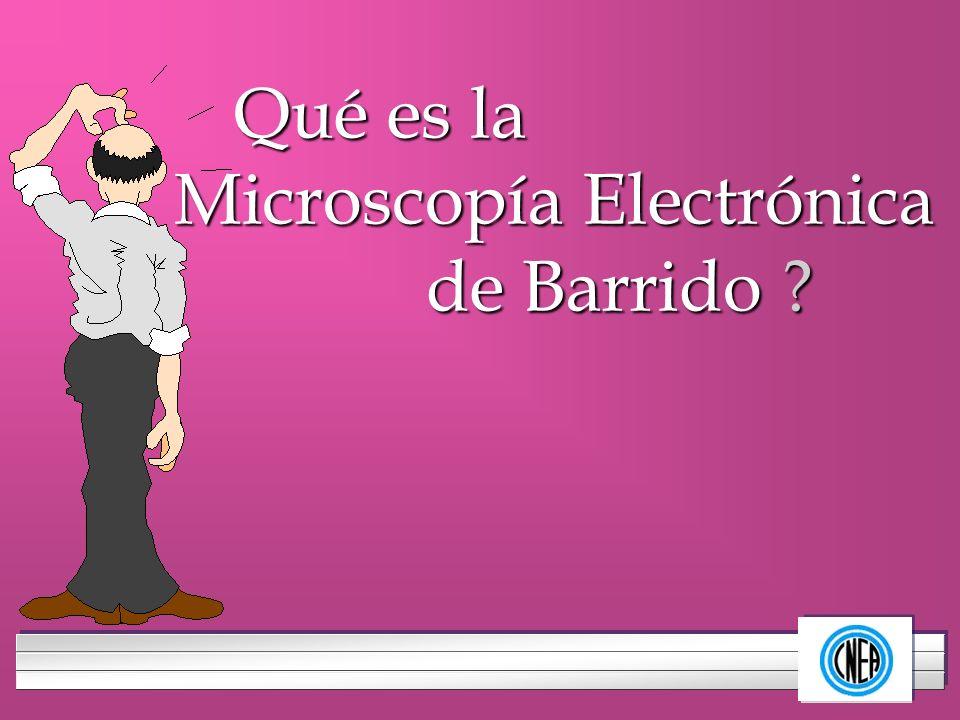 Qué es la Microscopía Electrónica de Barrido