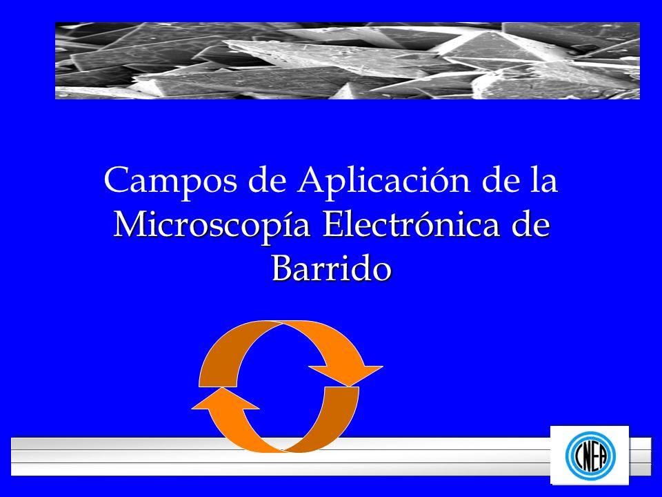 Campos de Aplicación de la Microscopía Electrónica de Barrido