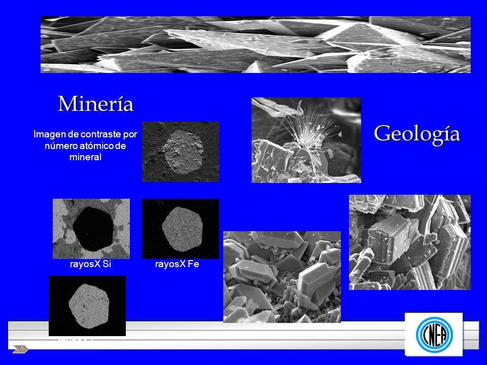 Imagen de contraste por número atómico de mineral