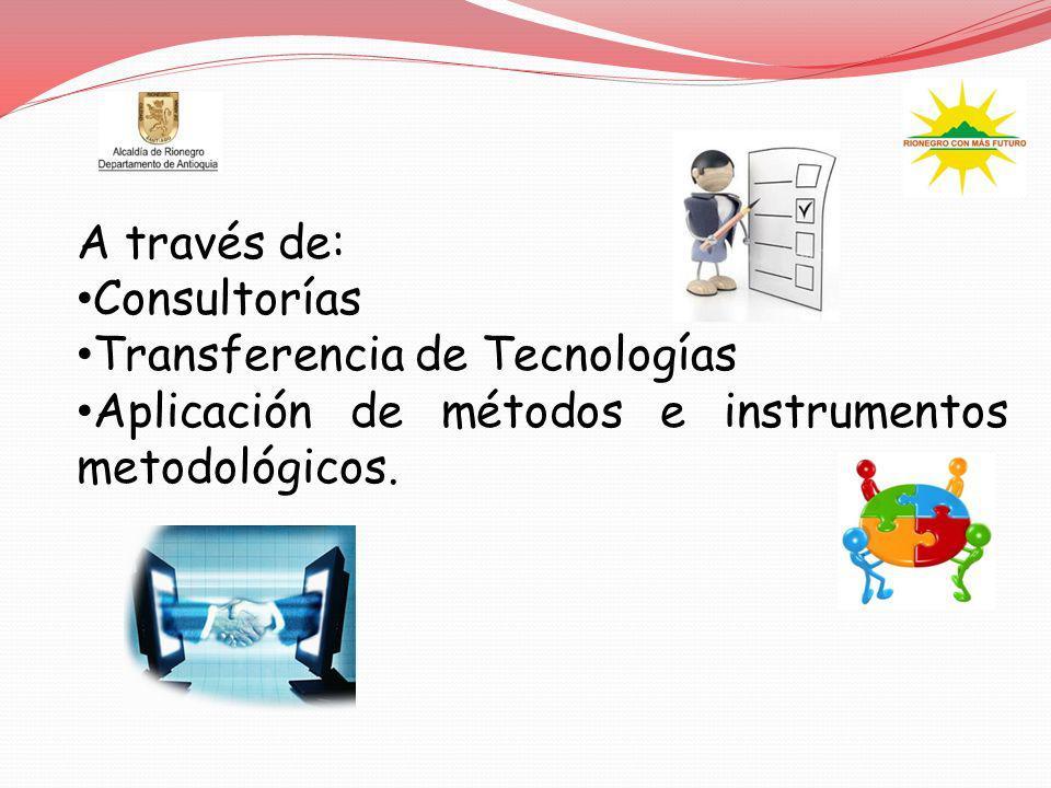 A través de: Consultorías. Transferencia de Tecnologías.