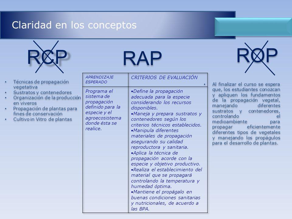 ROP RCP RAP Claridad en los conceptos CRITERIOS DE EVALUACIÓN