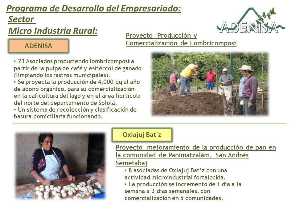 Programa de Desarrollo del Empresariado: Sector Micro Industria Rural:
