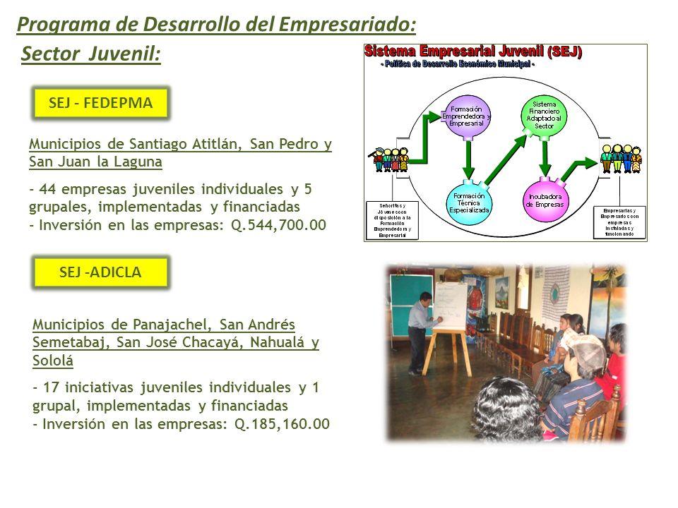 Programa de Desarrollo del Empresariado: Sector Juvenil: