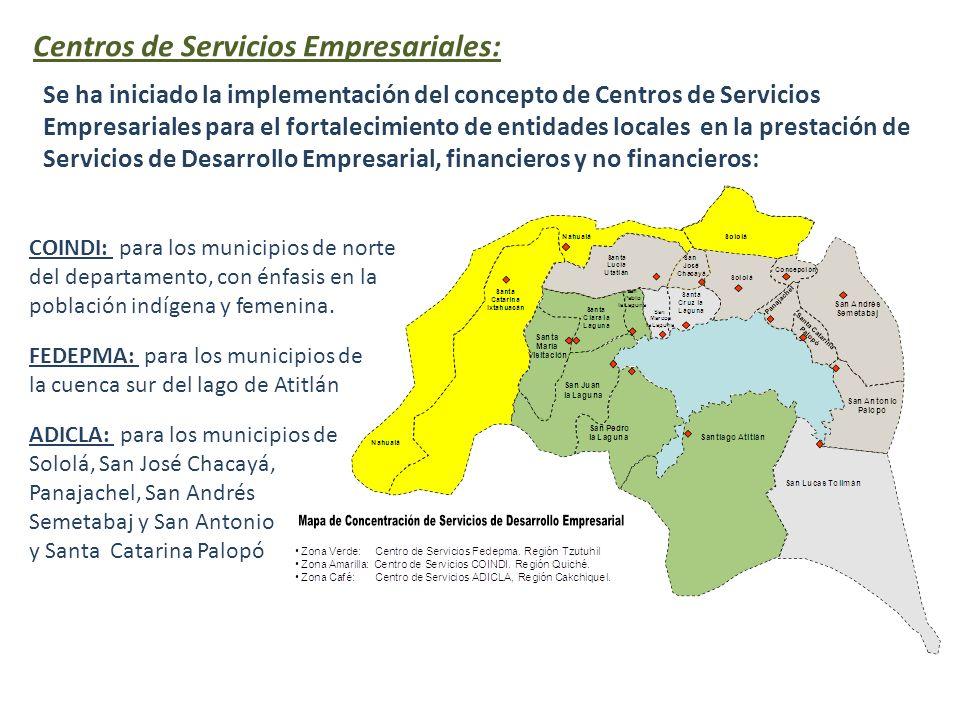 Centros de Servicios Empresariales: