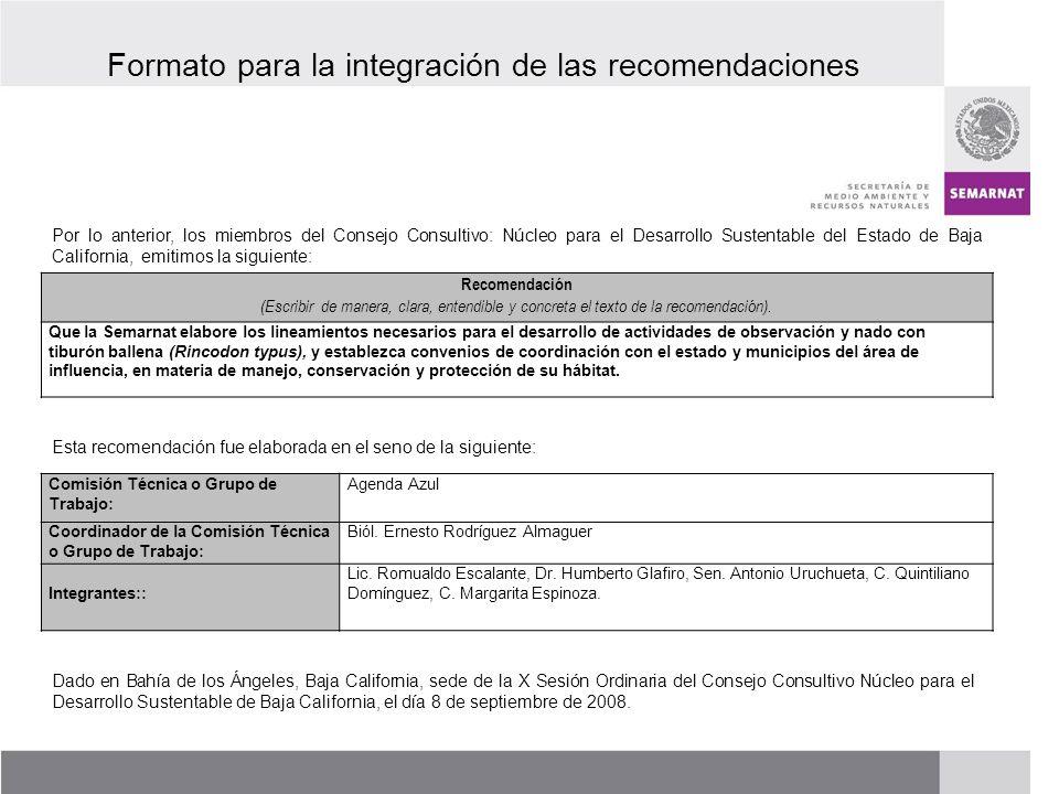Formato para la integración de las recomendaciones