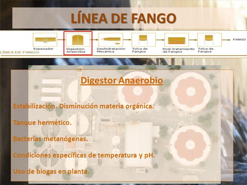 LÍNEA DE FANGO Digestor Anaerobio