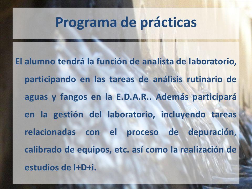 Programa de prácticas