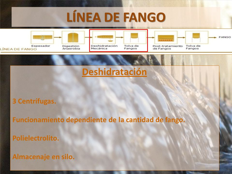 LÍNEA DE FANGO Deshidratación 3 Centrífugas.
