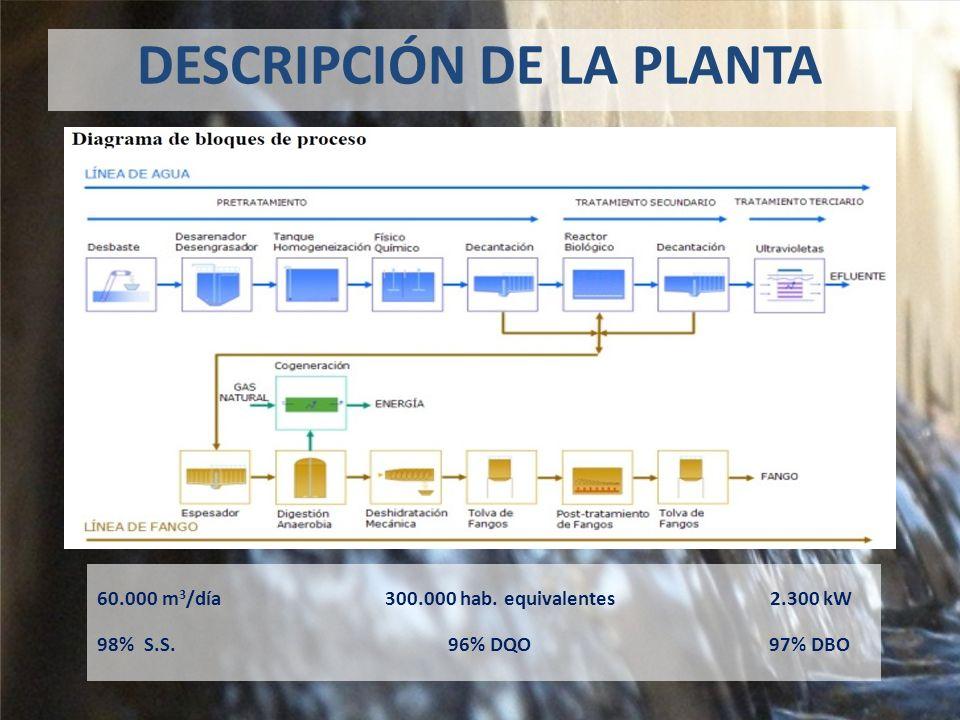 DESCRIPCIÓN DE LA PLANTA