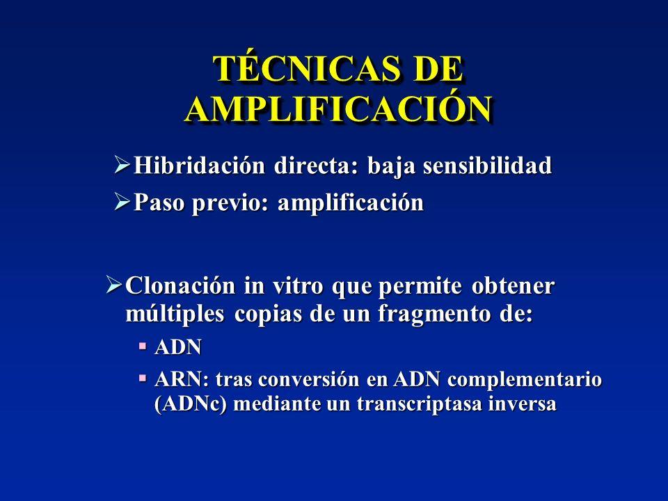 TÉCNICAS DE AMPLIFICACIÓN