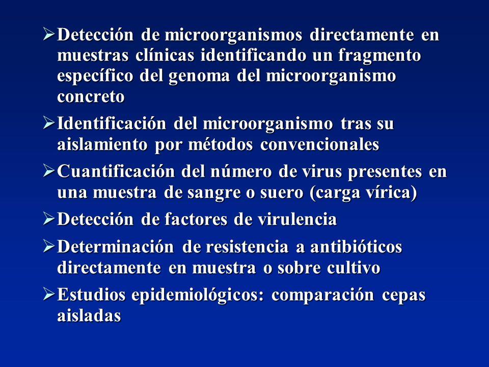 Detección de microorganismos directamente en muestras clínicas identificando un fragmento específico del genoma del microorganismo concreto