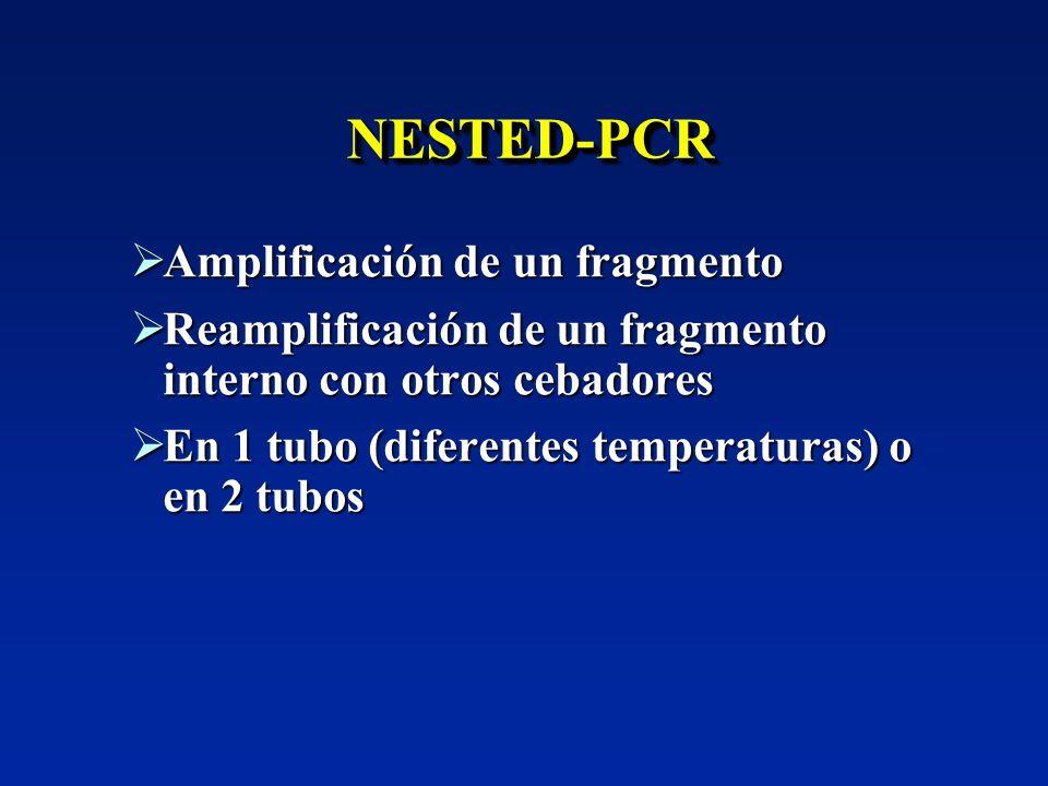 NESTED-PCR Amplificación de un fragmento