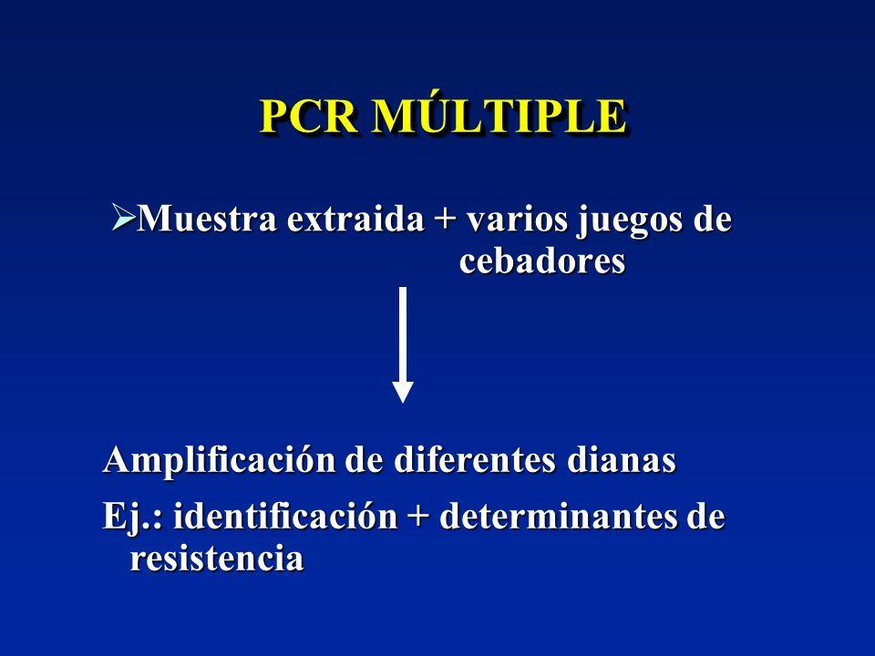 PCR MÚLTIPLE Muestra extraida + varios juegos de cebadores