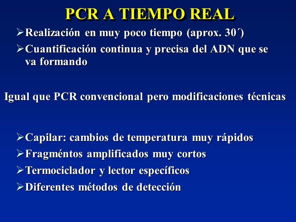 PCR A TIEMPO REAL Realización en muy poco tiempo (aprox. 30´)