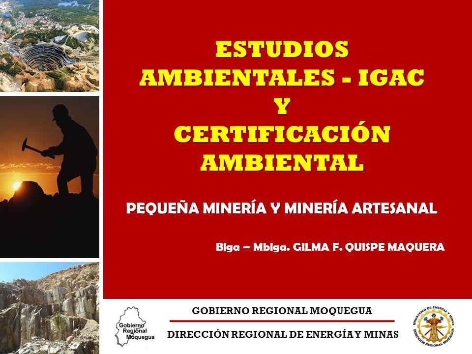 ESTUDIOS AMBIENTALES - IGAC Y CERTIFICACIÓN AMBIENTAL