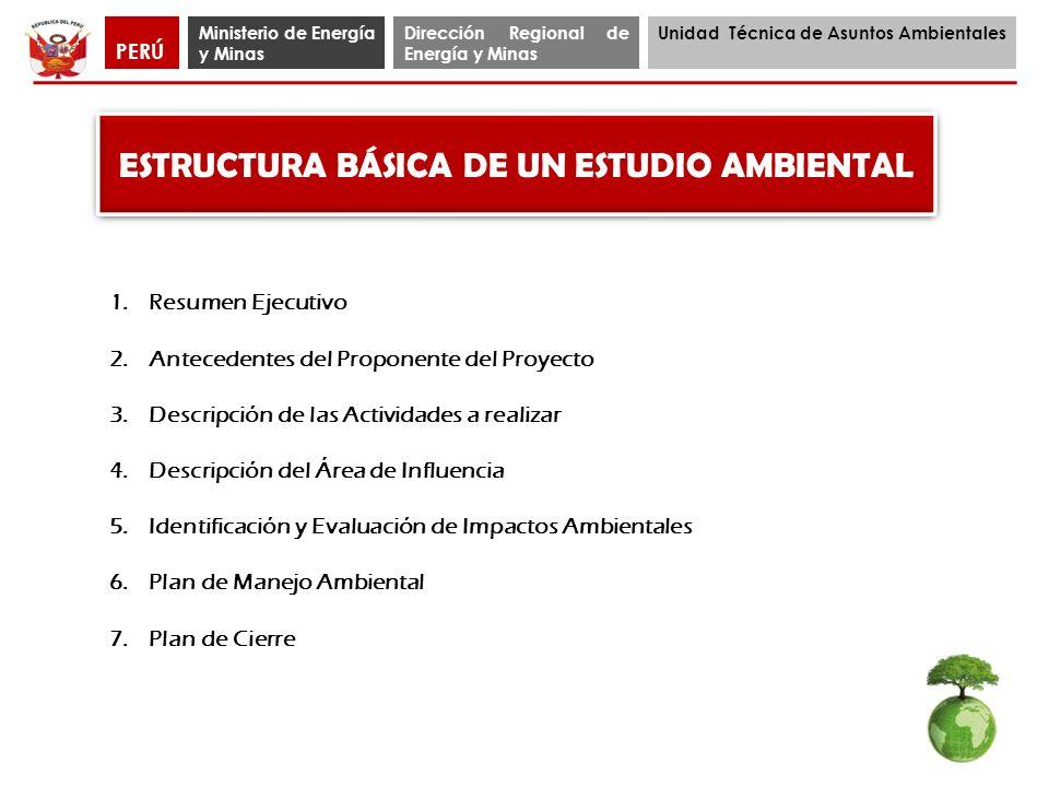 ESTRUCTURA BÁSICA DE UN ESTUDIO AMBIENTAL