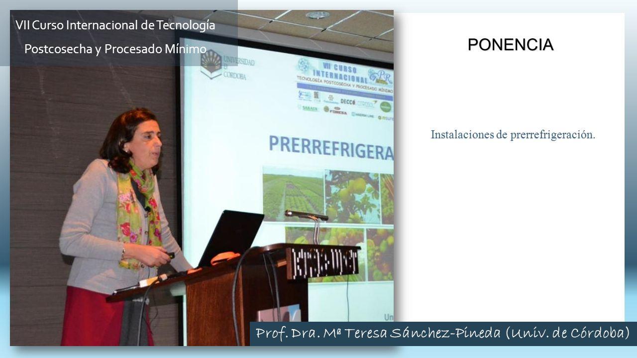 Prof. Dra. Mª Teresa Sánchez-Pineda (Univ. de Córdoba)