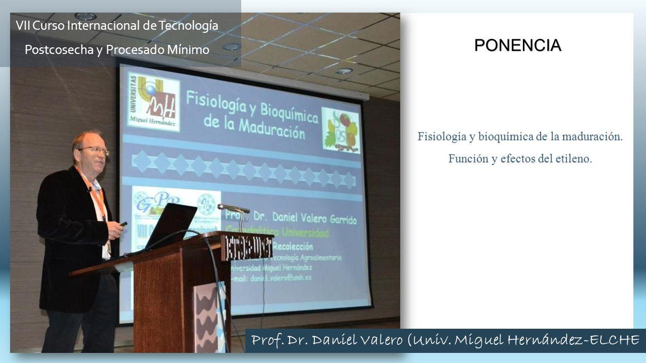Prof. Dr. Daniel Valero (Univ. Miguel Hernández-ELCHE