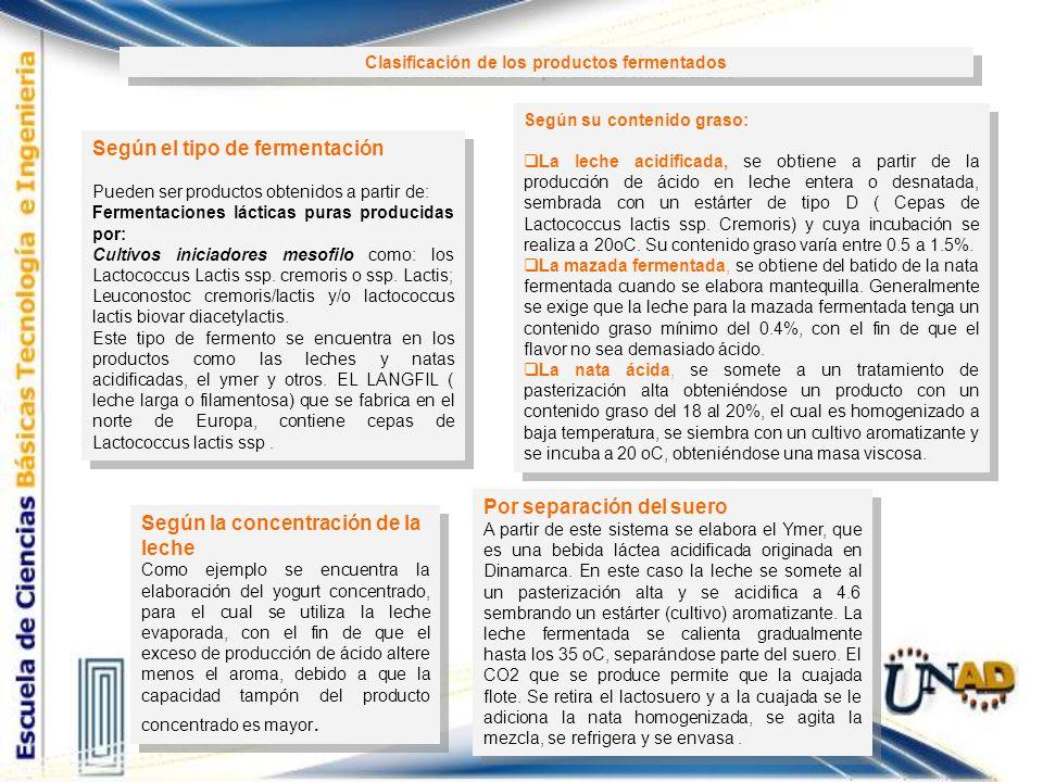 Clasificación de los productos fermentados
