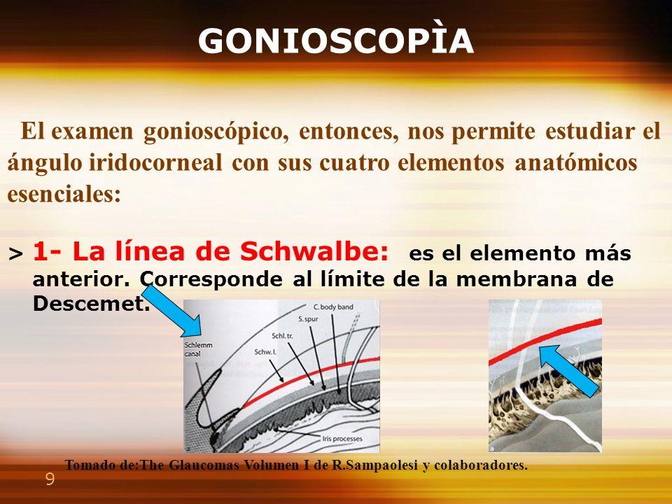 GONIOSCOPÌA El examen gonioscópico, entonces, nos permite estudiar el ángulo iridocorneal con sus cuatro elementos anatómicos esenciales: