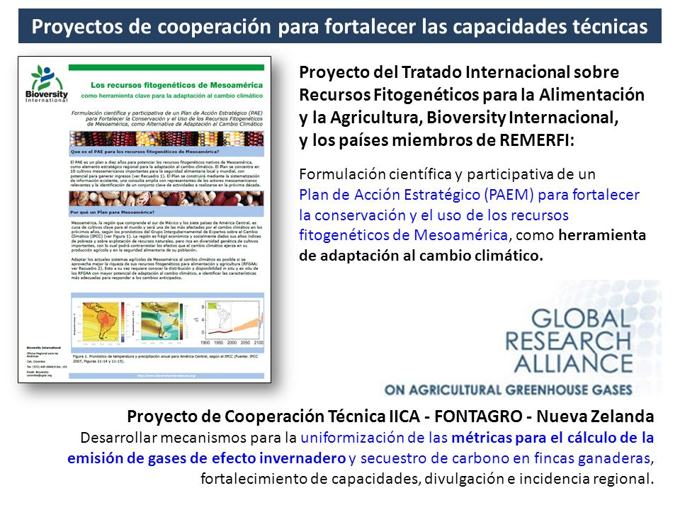 Proyectos de cooperación para fortalecer las capacidades técnicas