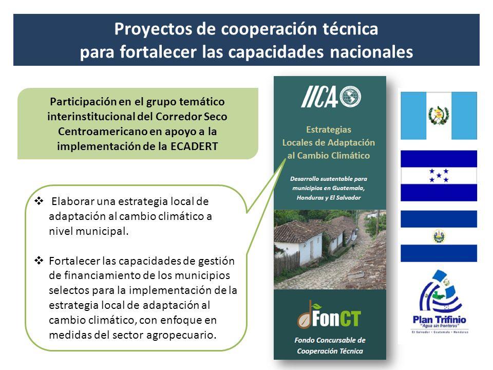 Proyectos de cooperación técnica