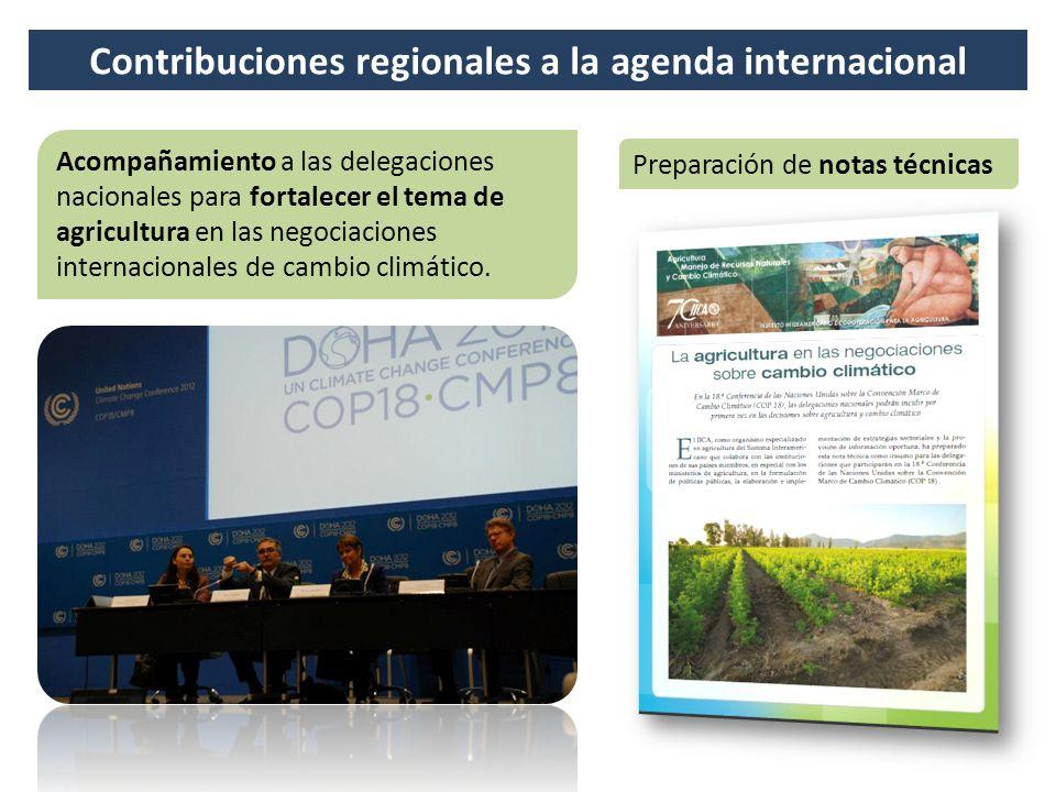 Contribuciones regionales a la agenda internacional