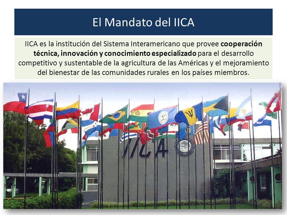 El Mandato del IICA