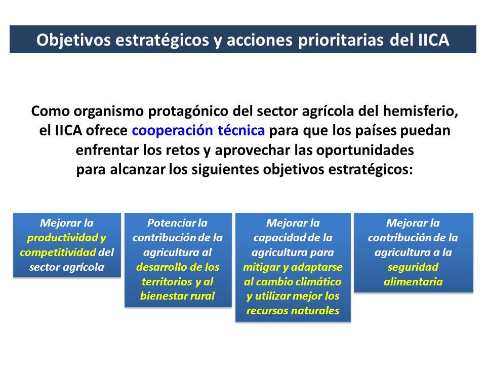 Objetivos estratégicos y acciones prioritarias del IICA