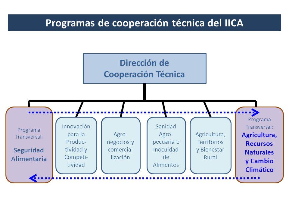 Programas de cooperación técnica del IICA